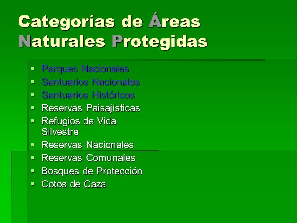 Categorías de Áreas Naturales Protegidas Parques Nacionales Parques Nacionales Santuarios Nacionales Santuarios Nacionales Santuarios Históricos Santu