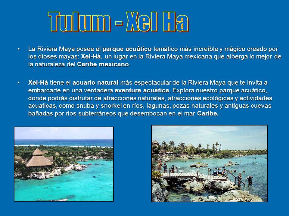 La Riviera Maya posee el parque acuático temático más increíble y mágico creado por los dioses mayas: Xel-Há, un lugar en la Riviera Maya mexicana que
