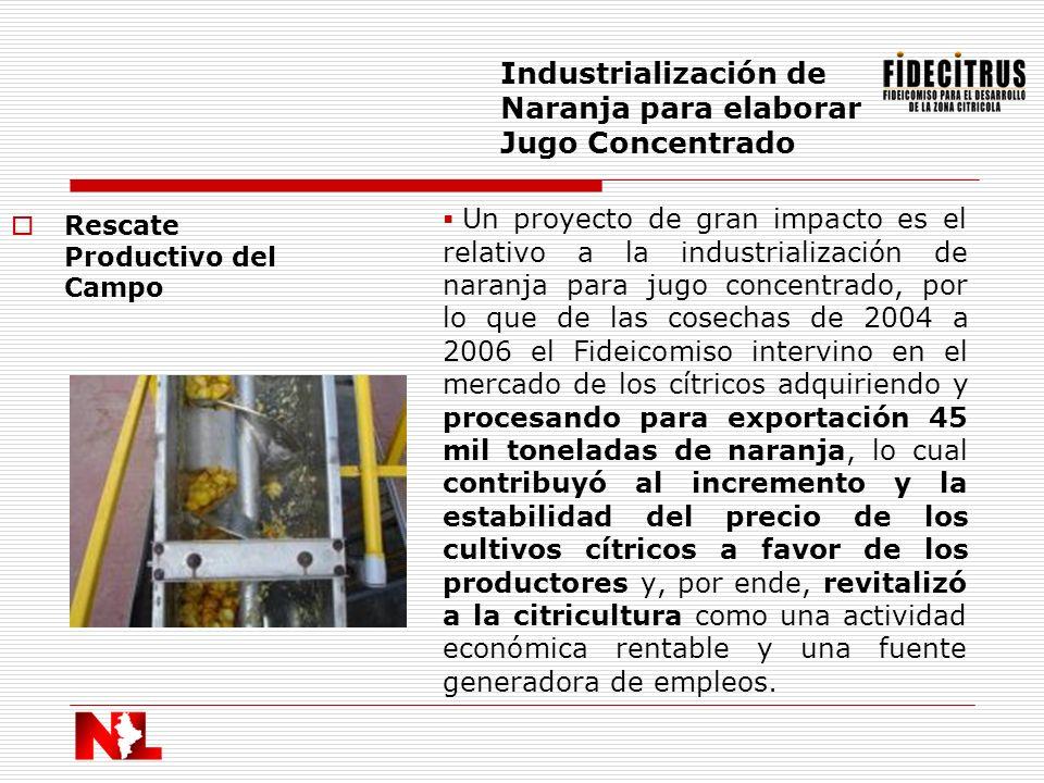 Rescate Productivo del Campo Industrialización de Naranja para elaborar Jugo Concentrado Un proyecto de gran impacto es el relativo a la industrializa