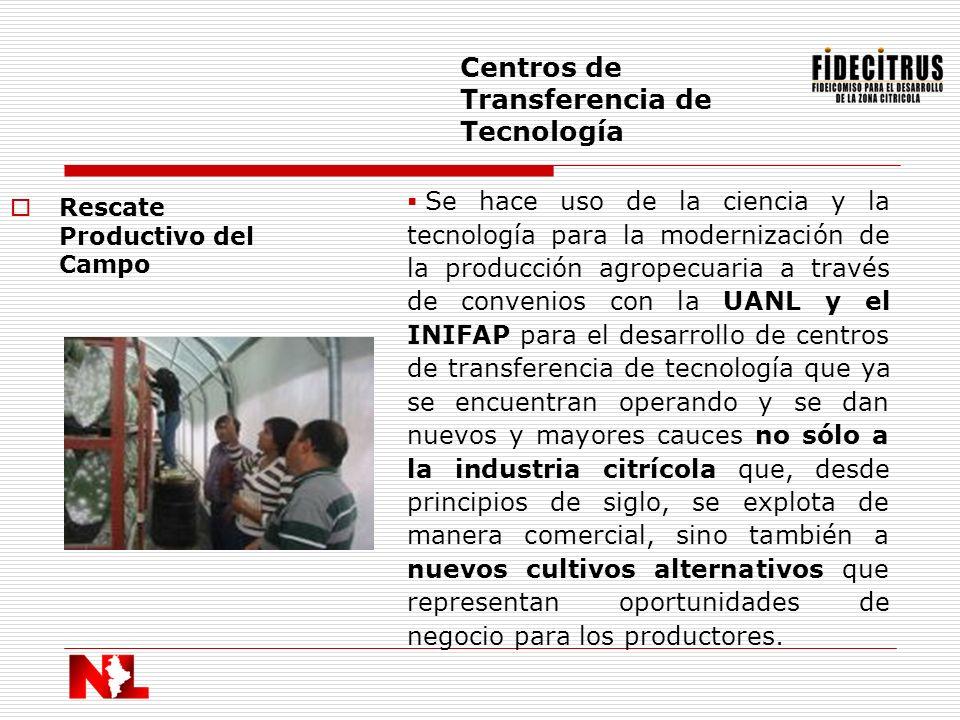 Rescate Productivo del Campo Centros de Transferencia de Tecnología Se hace uso de la ciencia y la tecnología para la modernización de la producción a