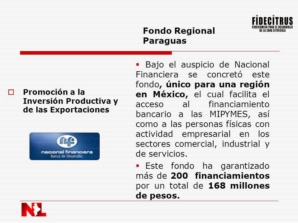 Promoción a la Inversión Productiva y de las Exportaciones Fondo Regional Paraguas Bajo el auspicio de Nacional Financiera se concretó este fondo, úni