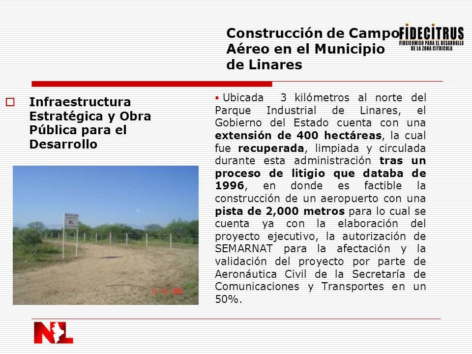 Infraestructura Estratégica y Obra Pública para el Desarrollo Construcción de Campo Aéreo en el Municipio de Linares Ubicada 3 kilómetros al norte del