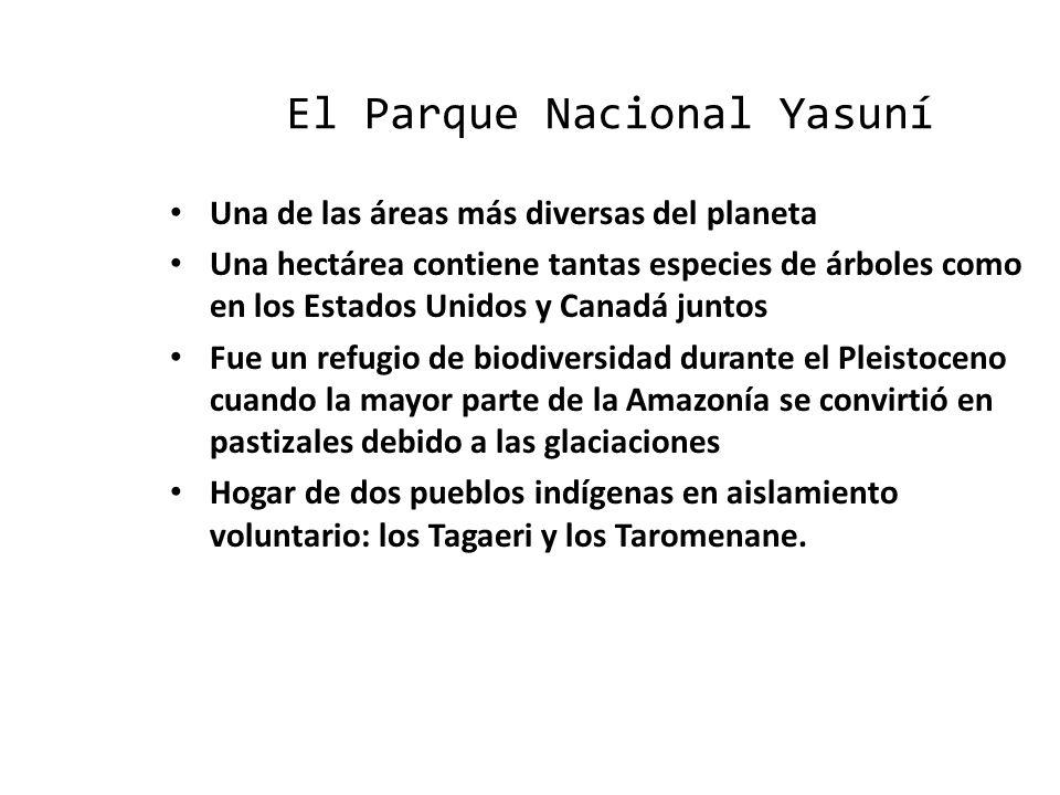 El Parque Nacional Yasuní Una de las áreas más diversas del planeta Una de las áreas más diversas del planeta Una hectárea contiene tantas especies de árboles como en los Estados Unidos y Canadá juntos Una hectárea contiene tantas especies de árboles como en los Estados Unidos y Canadá juntos Fue un refugio de biodiversidad durante el Pleistoceno cuando la mayor parte de la Amazonía se convirtió en pastizales debido a las glaciaciones Fue un refugio de biodiversidad durante el Pleistoceno cuando la mayor parte de la Amazonía se convirtió en pastizales debido a las glaciaciones Hogar de dos pueblos indígenas en aislamiento voluntario: los Tagaeri y los Taromenane.