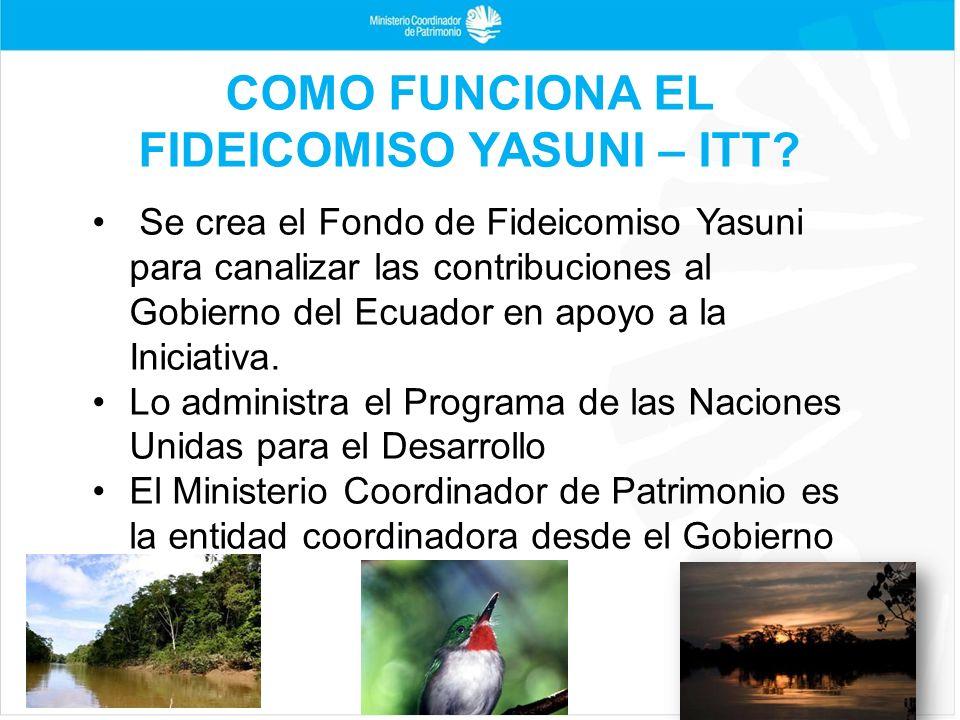 Se crea el Fondo de Fideicomiso Yasuni para canalizar las contribuciones al Gobierno del Ecuador en apoyo a la Iniciativa. Lo administra el Programa d