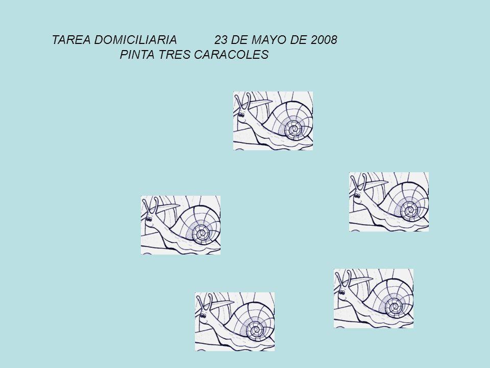 TAREA DOMICILIARIA 23 DE MAYO DE 2008 PINTA TRES CARACOLES