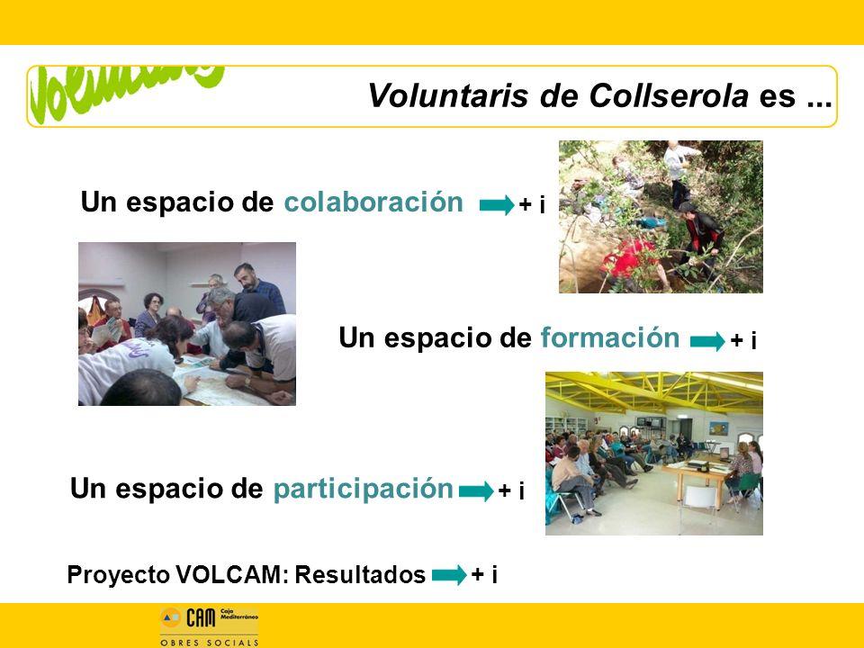 Voluntaris de Collserola es...