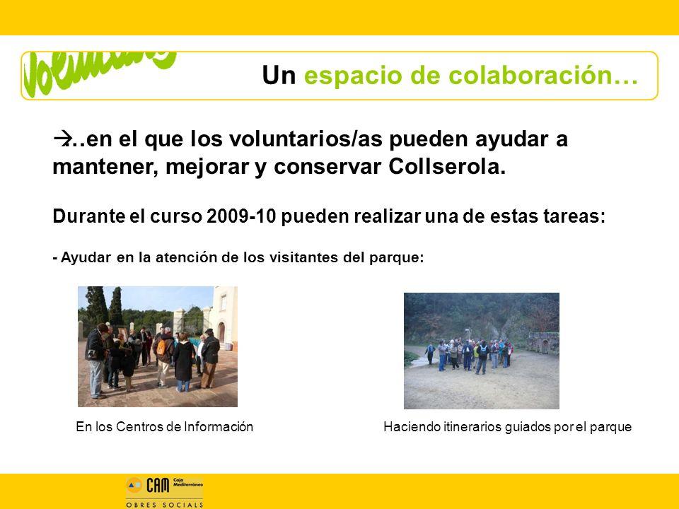 Un espacio de colaboración… …en el que los voluntarios/as pueden ayudar a mantener, mejorar y conservar Collserola.