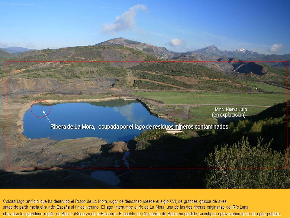 Colosal lago artificial que ha destruido el Prado de La Mora, lugar de descanso (desde el siglo XVI) de grandes grupos de aves antes de partir hacia el sur de España al fin del verano.