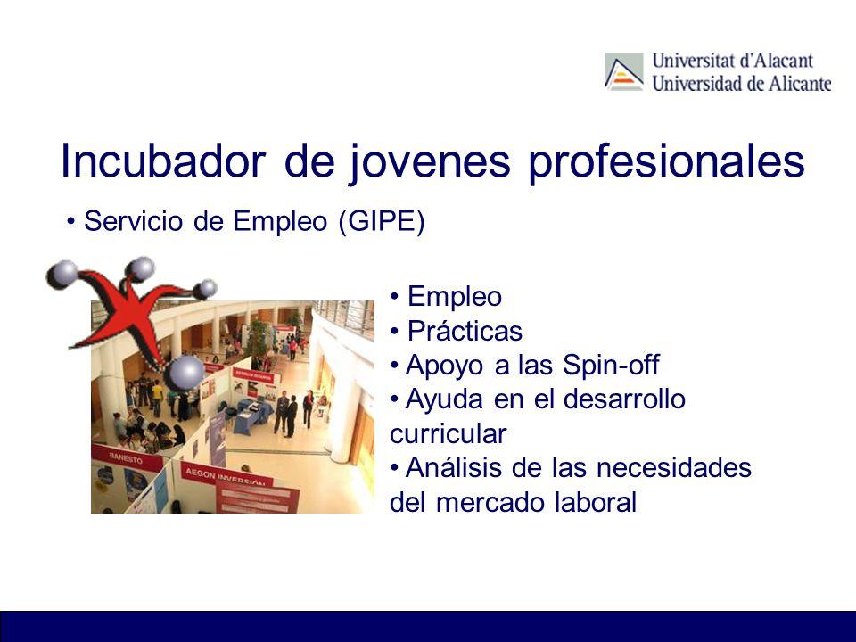 Incubador de jovenes profesionales Servicio de Empleo (GIPE) Empleo Prácticas Apoyo a las Spin-off Ayuda en el desarrollo curricular Análisis de las n