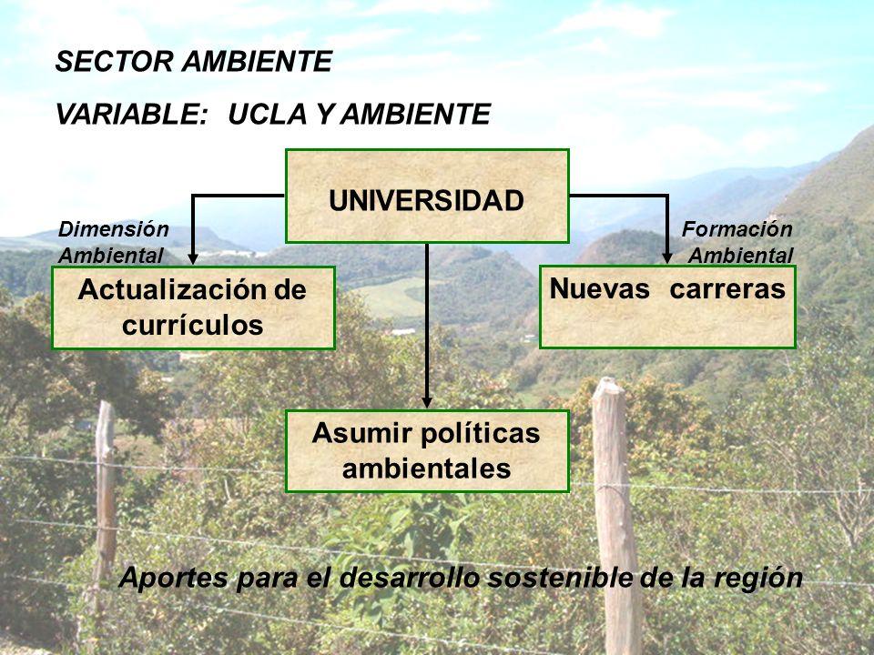 UNIVERSIDAD Actualización de currículos Nuevas carreras Dimensión Ambiental Formación Ambiental Asumir políticas ambientales Aportes para el desarroll