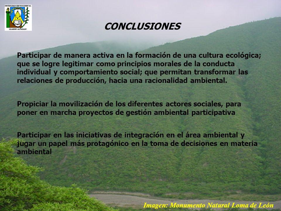 Participar de manera activa en la formación de una cultura ecológica; que se logre legitimar como principios morales de la conducta individual y compo