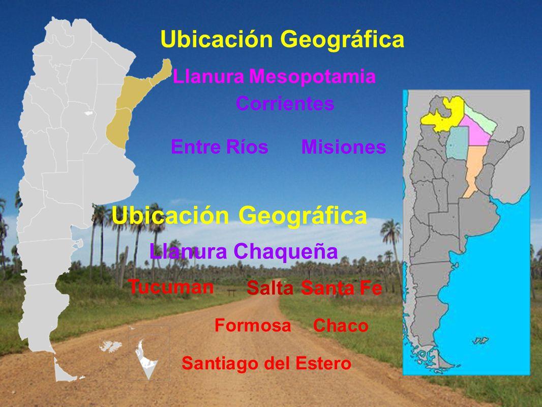 Ubicación Geográfica Llanura Mesopotamia Misiones Corrientes Entre Ríos Ubicación Geográfica Llanura Chaqueña Santa Fe Chaco Santiago del Estero Salta
