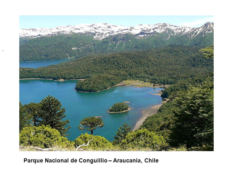 . Parque Nacional de Conguillio – Araucania, Chile
