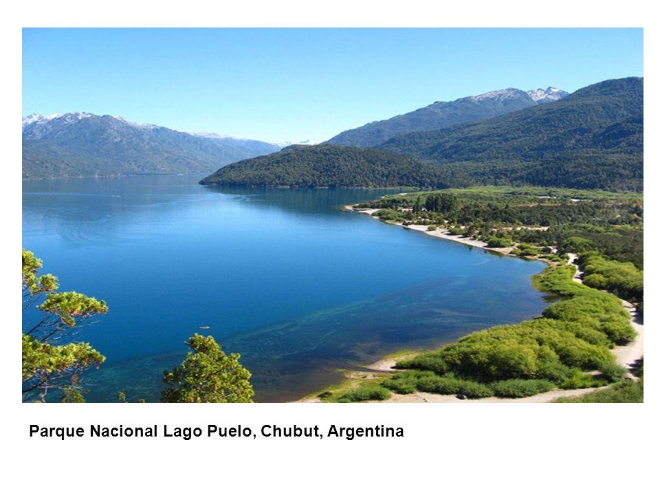 CONTENIDO DE LA PRESENTACIÓN Parque Nacional Lago Puelo, Chubut, Argentina