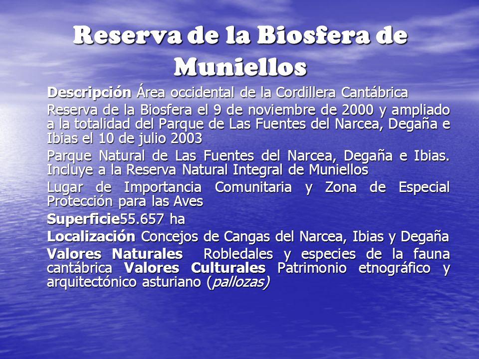 Reserva de la Biosfera de Muniellos Descripción Área occidental de la Cordillera Cantábrica Reserva de la Biosfera el 9 de noviembre de 2000 y ampliad
