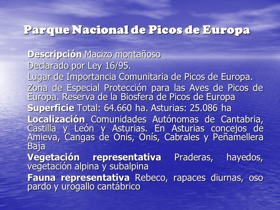 Parque Nacional de Picos de Europa Descripción Macizo montañoso Declarado por Ley 16/95. Lugar de Importancia Comunitaria de Picos de Europa. Zona de