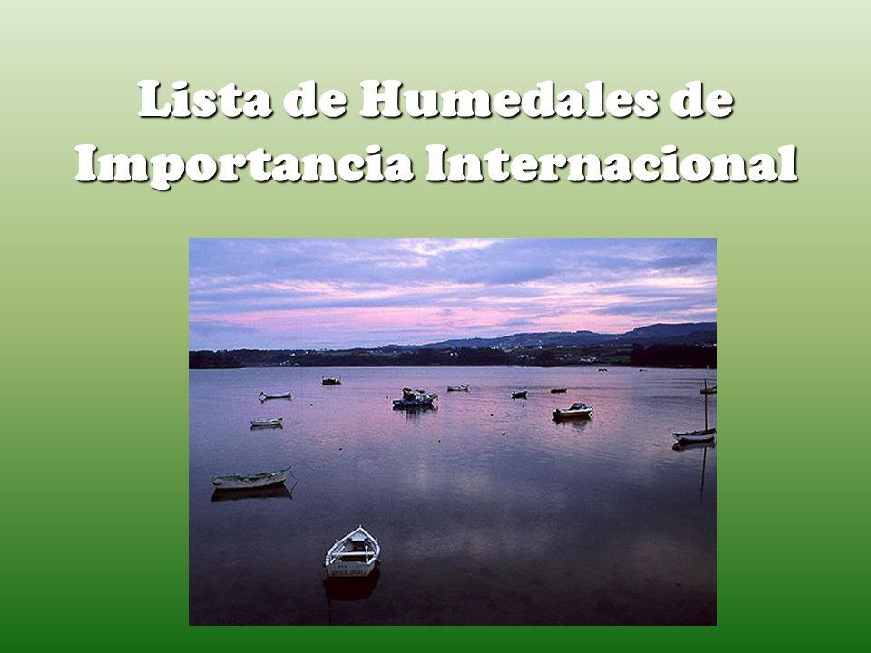 Lista de Humedales de Importancia Internacional