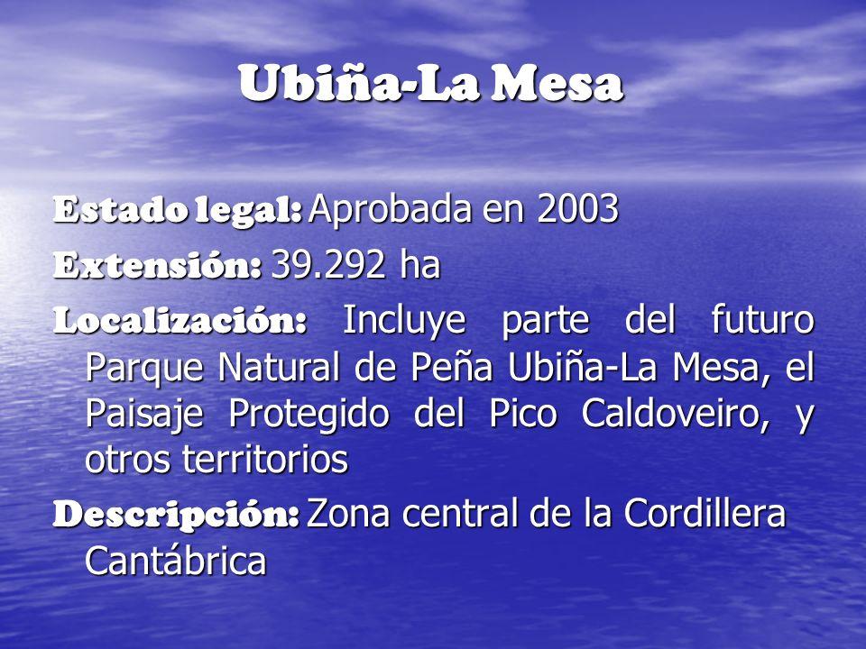 Ubiña-La Mesa Estado legal: Aprobada en 2003 Extensión: 39.292 ha Localización: Incluye parte del futuro Parque Natural de Peña Ubiña-La Mesa, el Pais