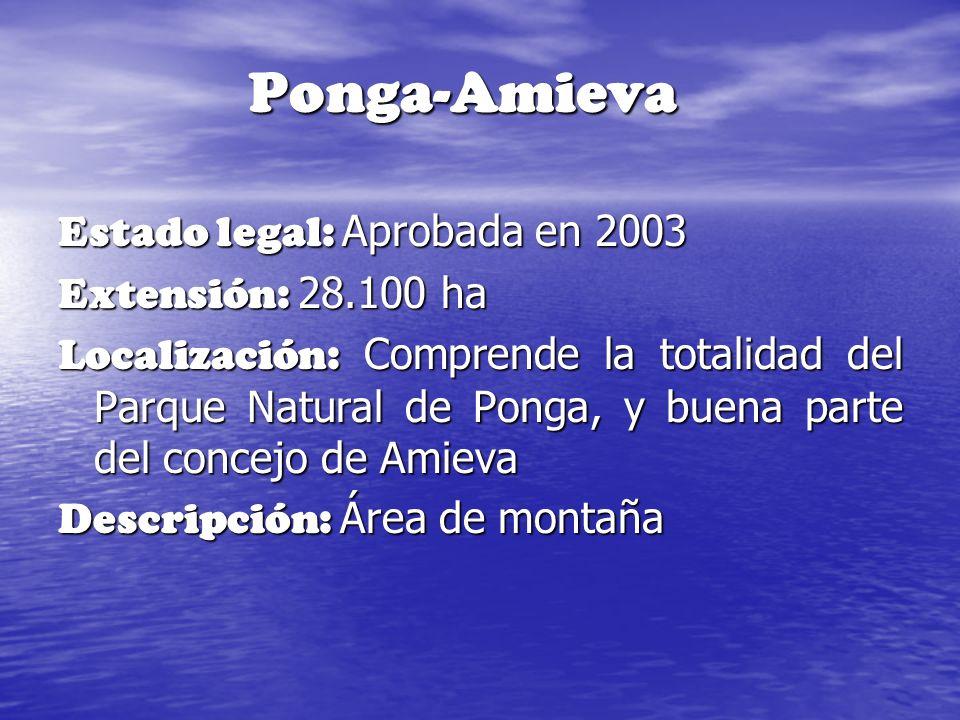 Ponga-Amieva Estado legal: Aprobada en 2003 Extensión: 28.100 ha Localización: Comprende la totalidad del Parque Natural de Ponga, y buena parte del c