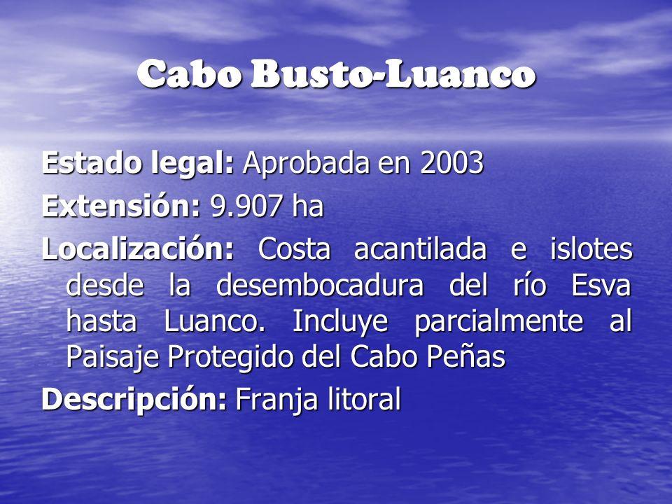 Cabo Busto-Luanco Estado legal: Aprobada en 2003 Extensión: 9.907 ha Localización: Costa acantilada e islotes desde la desembocadura del río Esva hast