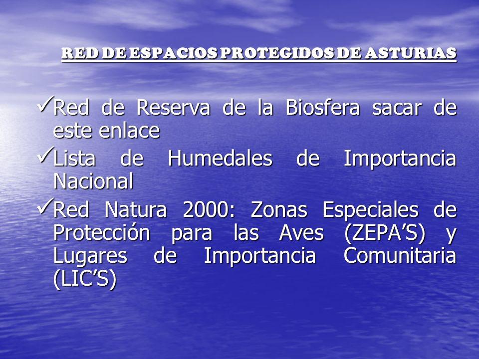 RED DE ESPACIOS PROTEGIDOS DE ASTURIAS Red de Reserva de la Biosfera sacar de este enlace Red de Reserva de la Biosfera sacar de este enlace Lista de