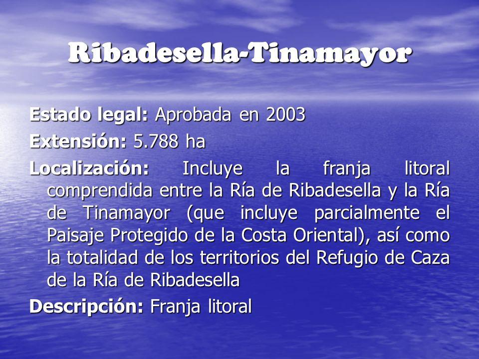 Ribadesella-Tinamayor Estado legal: Aprobada en 2003 Extensión: 5.788 ha Localización: Incluye la franja litoral comprendida entre la Ría de Ribadesel