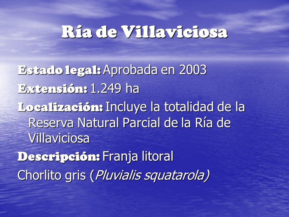 Ría de Villaviciosa Estado legal: Aprobada en 2003 Extensión: 1.249 ha Localización: Incluye la totalidad de la Reserva Natural Parcial de la Ría de V