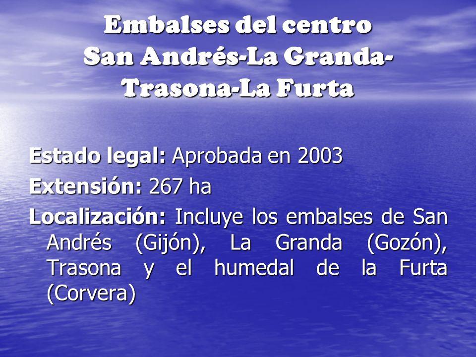 Embalses del centro San Andrés-La Granda- Trasona-La Furta Estado legal: Aprobada en 2003 Extensión: 267 ha Localización: Incluye los embalses de San