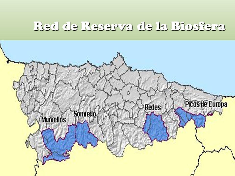 Red de Reserva de la Biosfera