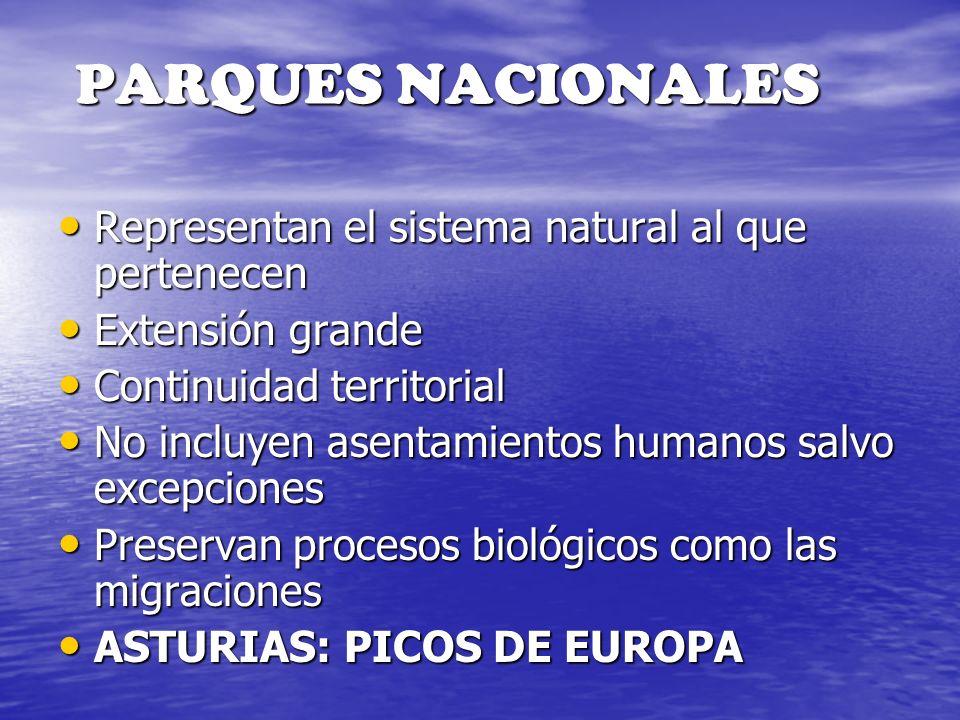 PARQUES NACIONALES Representan el sistema natural al que pertenecen Representan el sistema natural al que pertenecen Extensión grande Extensión grande