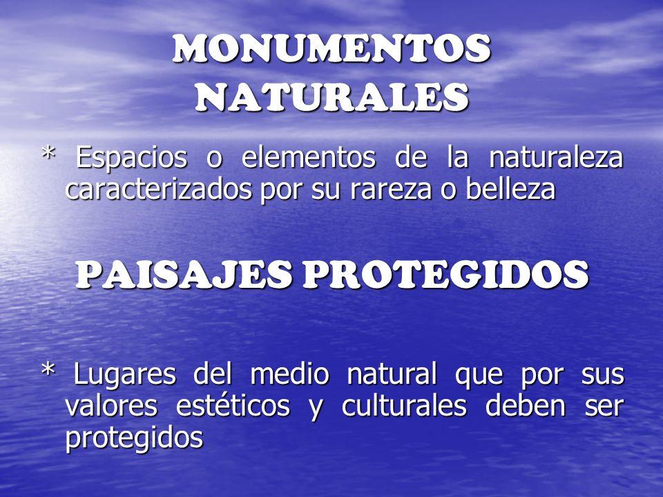MONUMENTOS NATURALES * Espacios o elementos de la naturaleza caracterizados por su rareza o belleza PAISAJES PROTEGIDOS * Lugares del medio natural qu