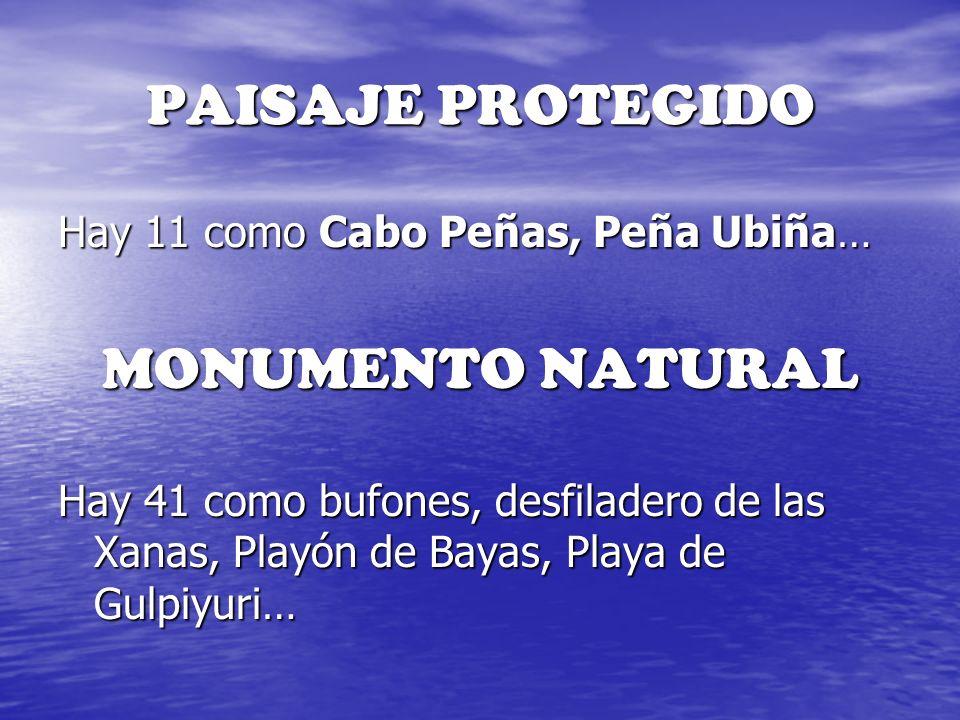 PAISAJE PROTEGIDO Hay 11 como Cabo Peñas, Peña Ubiña… MONUMENTO NATURAL Hay 41 como bufones, desfiladero de las Xanas, Playón de Bayas, Playa de Gulpi