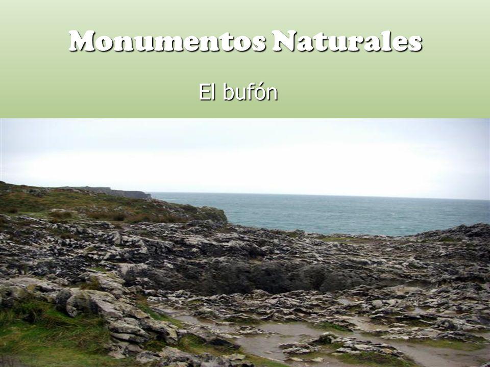 Monumentos Naturales El bufón El bufón