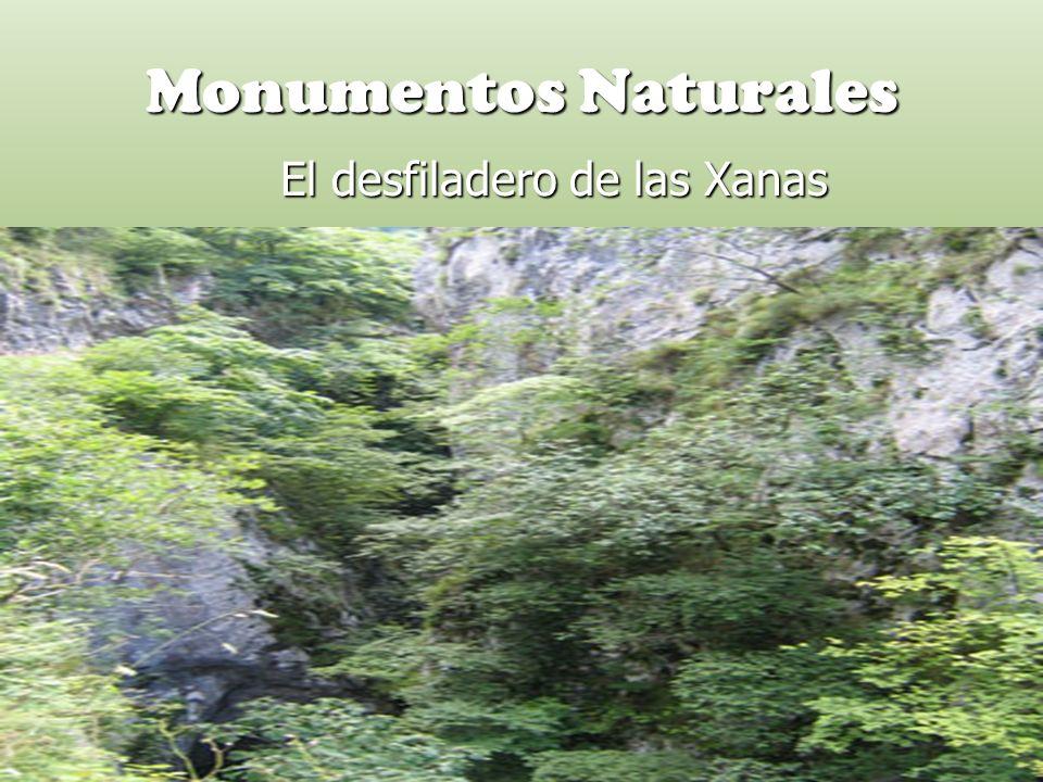 Monumentos Naturales El desfiladero de las Xanas El desfiladero de las Xanas