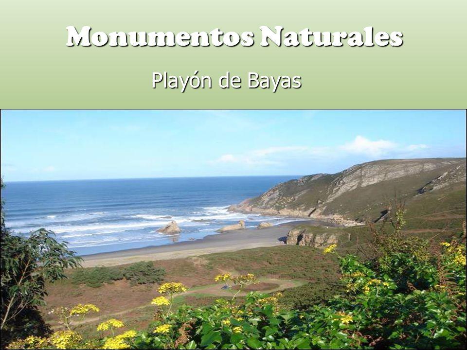 Monumentos Naturales Playón de Bayas Playón de Bayas