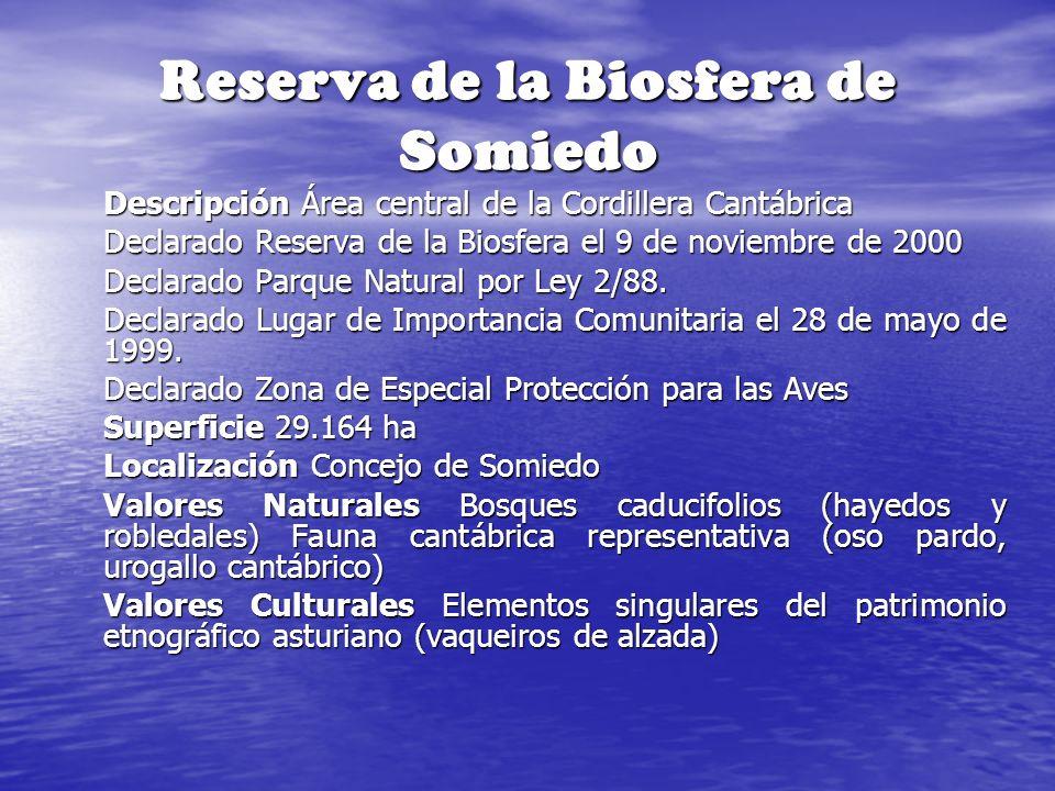 Reserva de la Biosfera de Somiedo Descripción Área central de la Cordillera Cantábrica Declarado Reserva de la Biosfera el 9 de noviembre de 2000 Decl