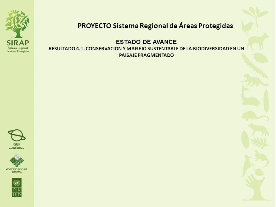PROYECTO Sistema Regional de Áreas Protegidas ESTADO DE AVANCE RESULTADO 4.1. CONSERVACION Y MANEJO SUSTENTABLE DE LA BIODIVERSIDAD EN UN PAISAJE FRAG