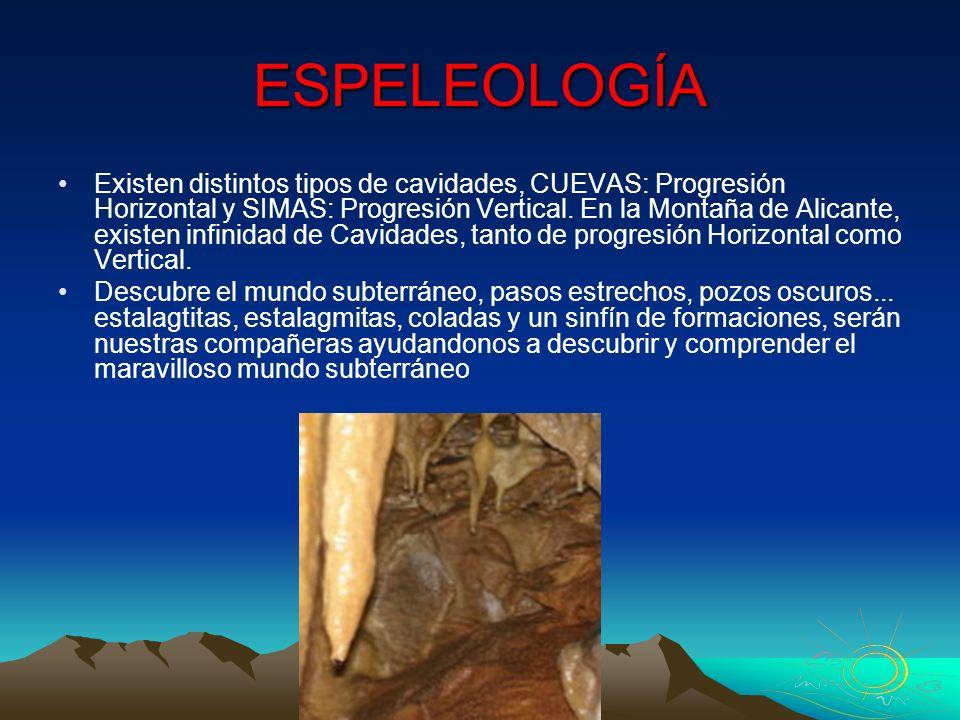 ESPELEOLOGÍA Existen distintos tipos de cavidades, CUEVAS: Progresión Horizontal y SIMAS: Progresión Vertical. En la Montaña de Alicante, existen infi