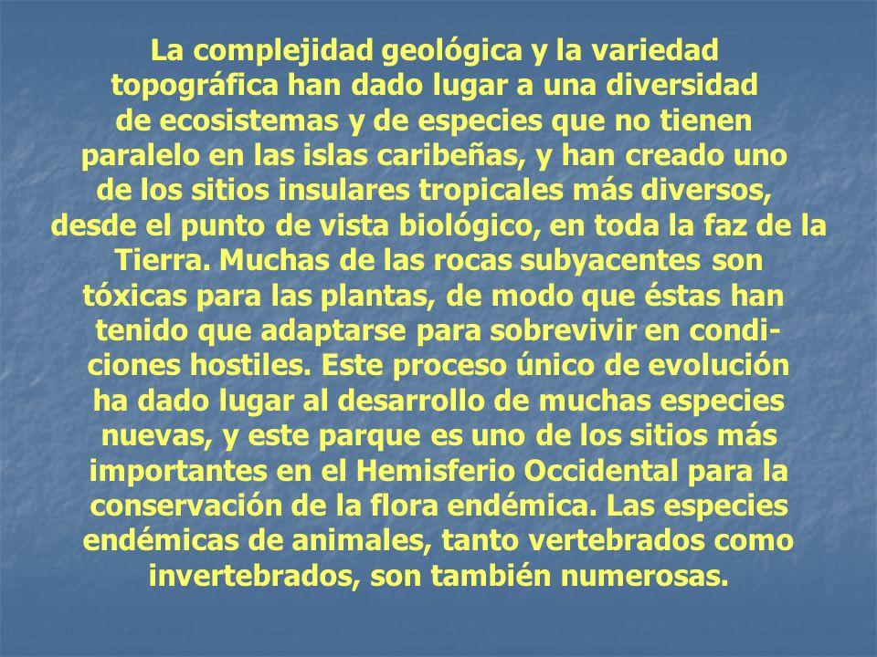 La complejidad geológica y la variedad topográfica han dado lugar a una diversidad de ecosistemas y de especies que no tienen paralelo en las islas ca