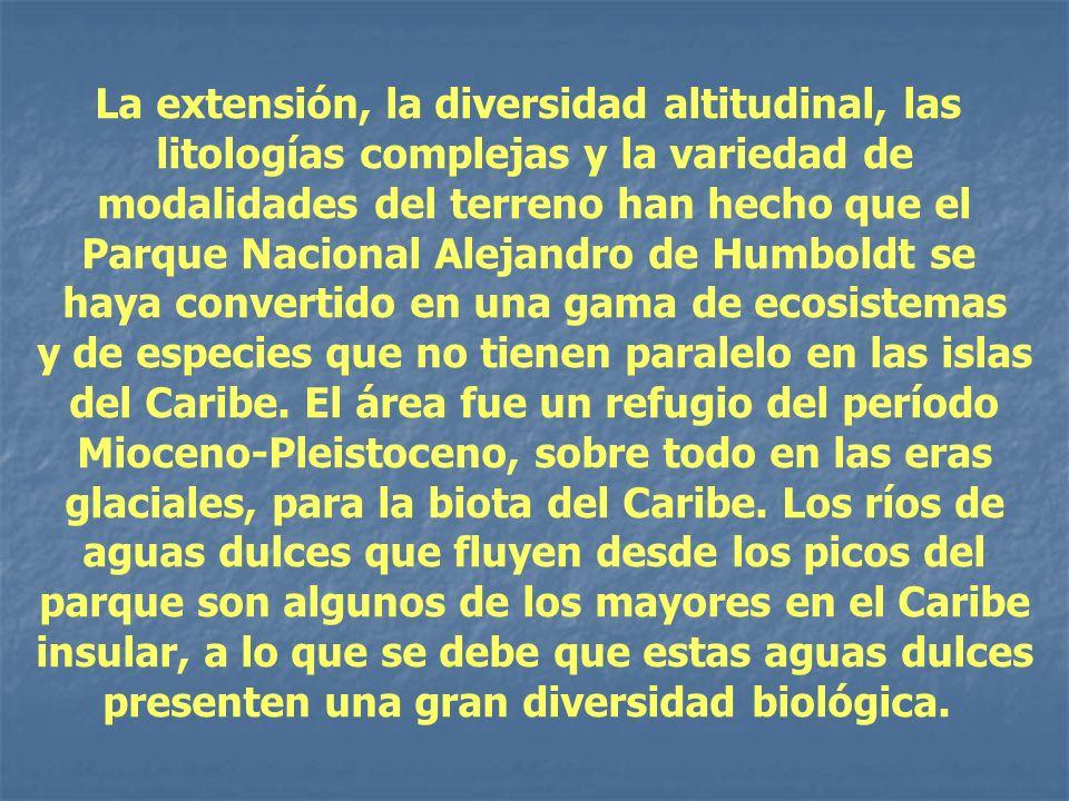 La extensión, la diversidad altitudinal, las litologías complejas y la variedad de modalidades del terreno han hecho que el Parque Nacional Alejandro