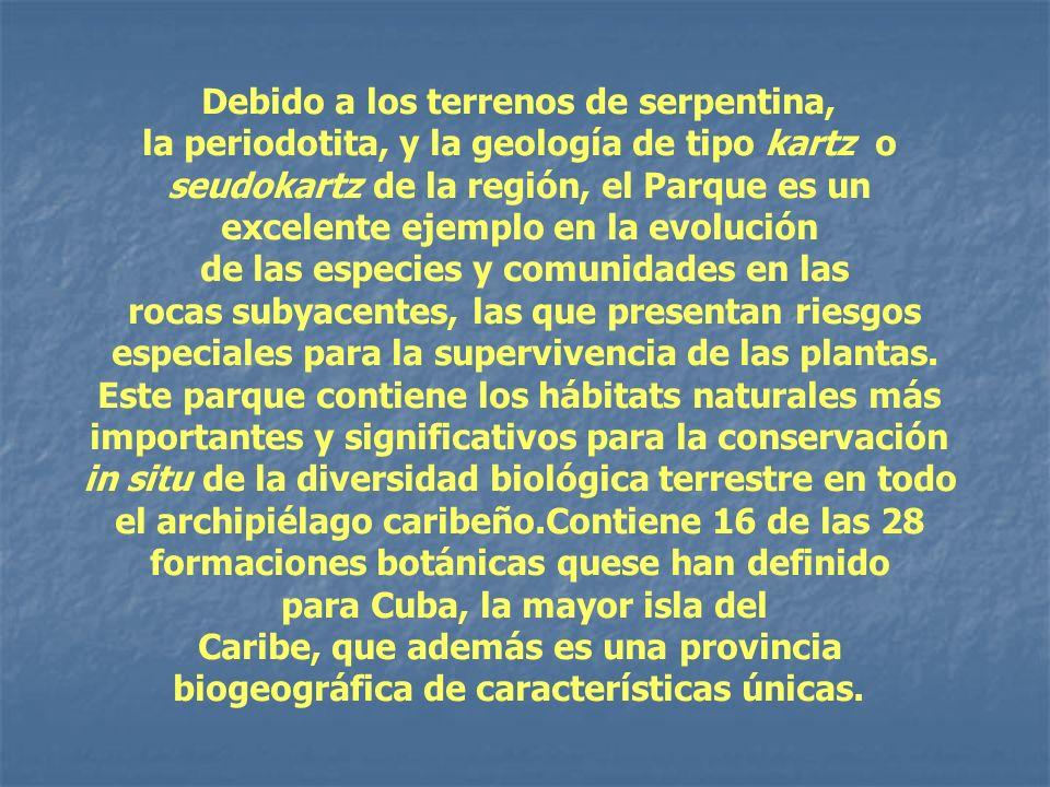 Debido a los terrenos de serpentina, la periodotita, y la geología de tipo kartz o seudokartz de la región, el Parque es un excelente ejemplo en la ev