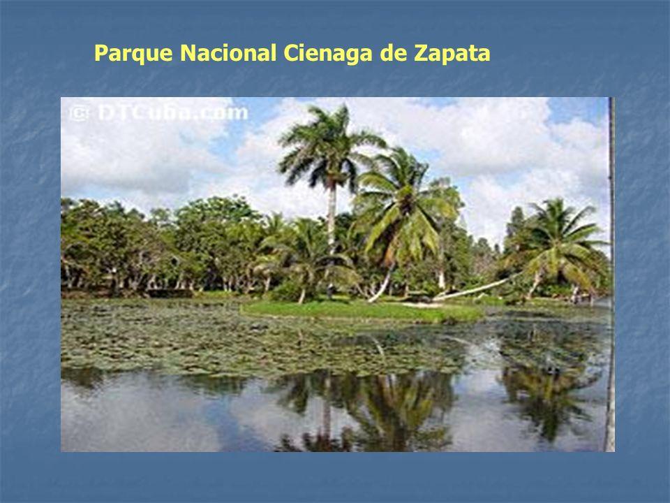 Parque Nacional Cienaga de Zapata