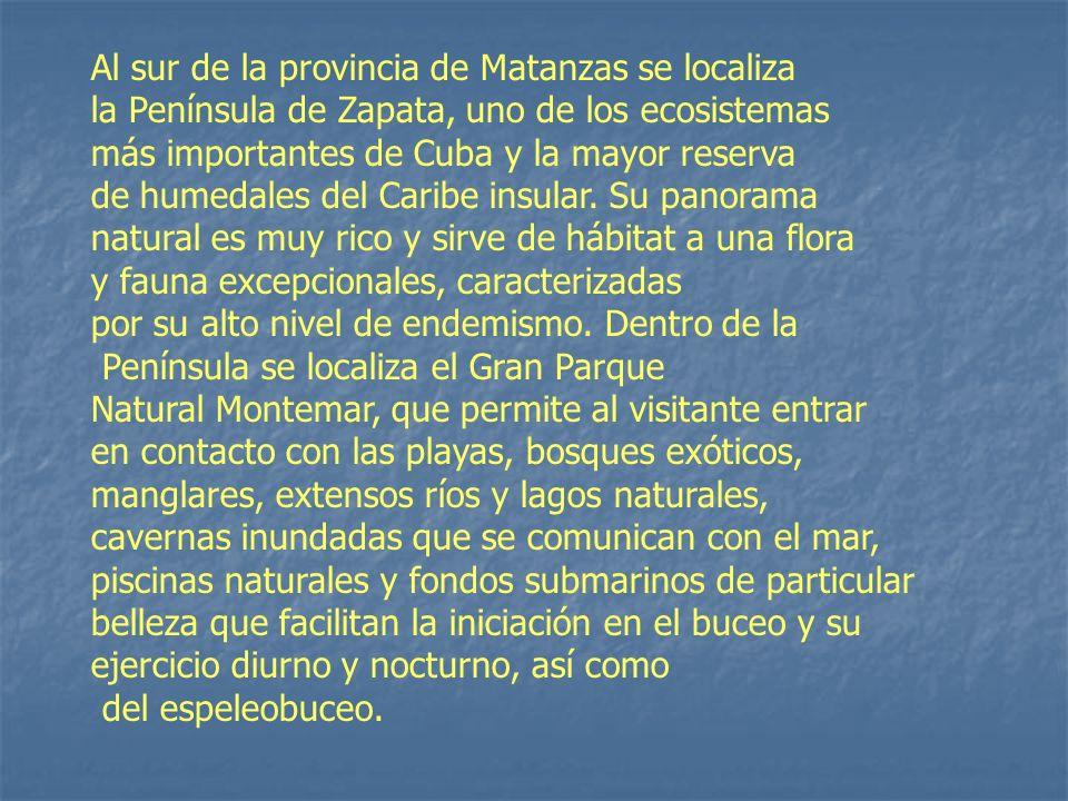 Al sur de la provincia de Matanzas se localiza la Península de Zapata, uno de los ecosistemas más importantes de Cuba y la mayor reserva de humedales