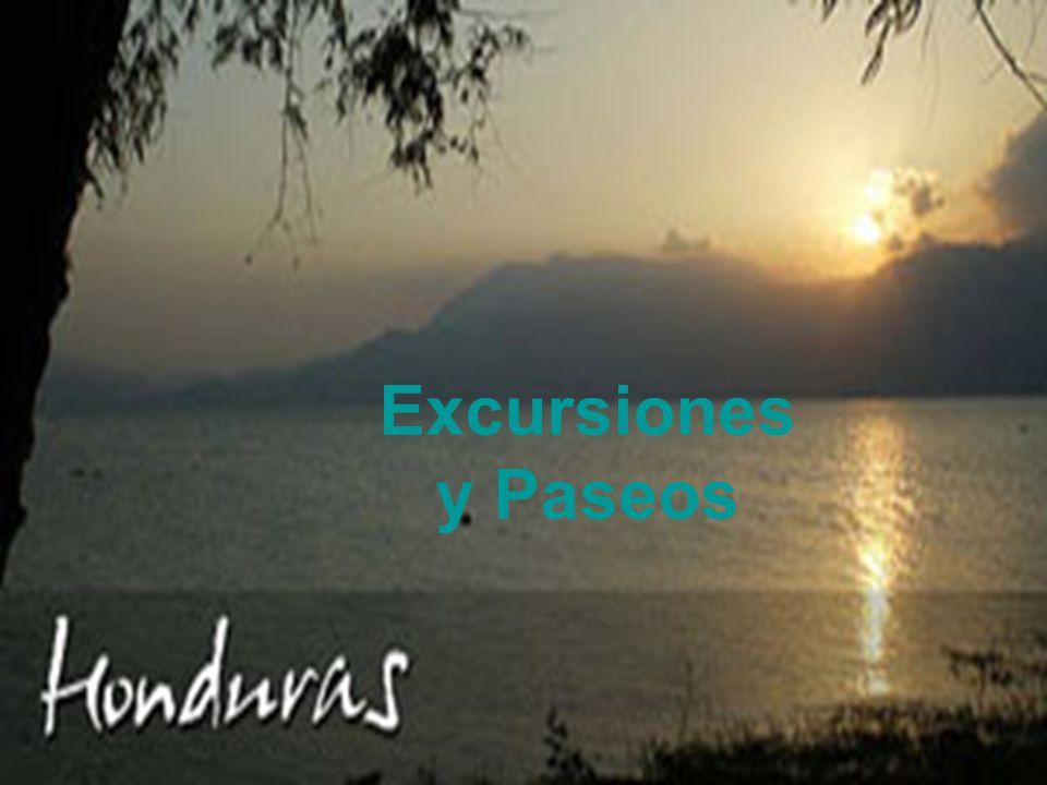 Excursiones y Paseos