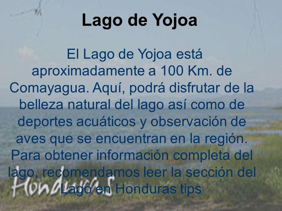 Lago de Yojoa El Lago de Yojoa está aproximadamente a 100 Km.