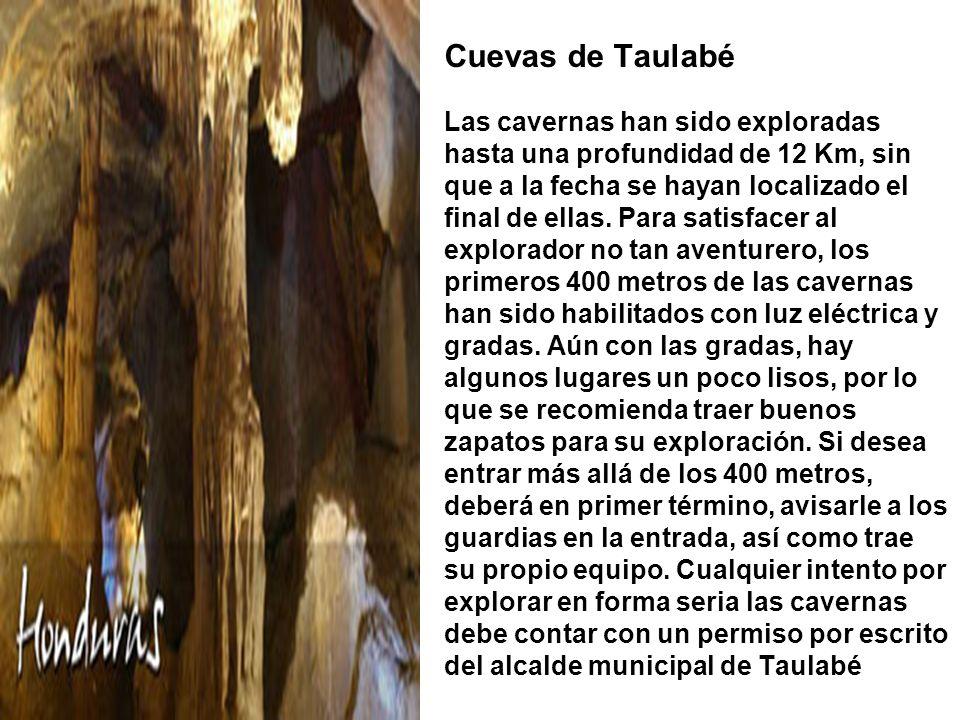 Cuevas de Taulabé Las cavernas han sido exploradas hasta una profundidad de 12 Km, sin que a la fecha se hayan localizado el final de ellas.