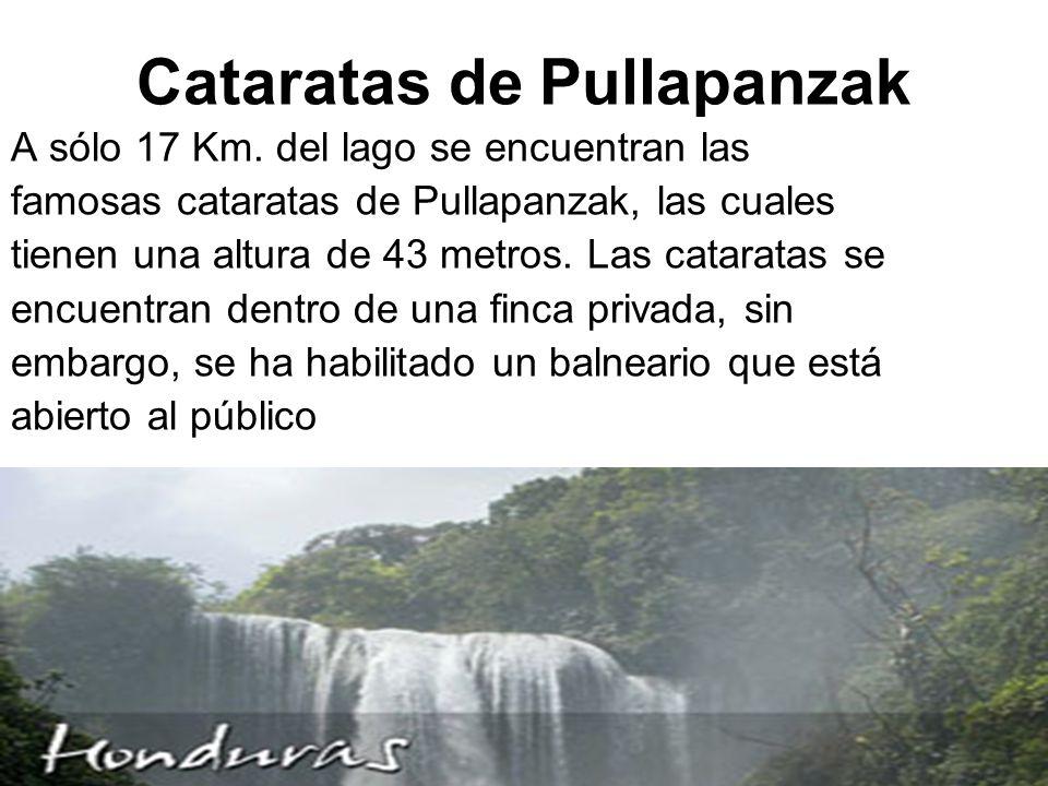 Cataratas de Pullapanzak A sólo 17 Km.
