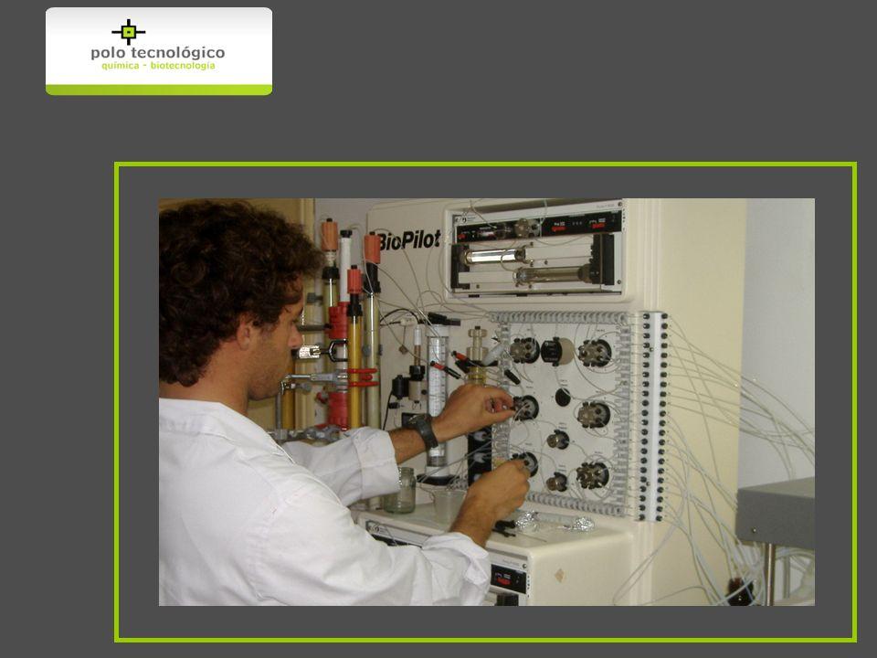Este título otorgado por la Facultad de Química ha sido reconocido en el 2003 (renovado en el 2007), por la Royal Society of Chemistry (UK).