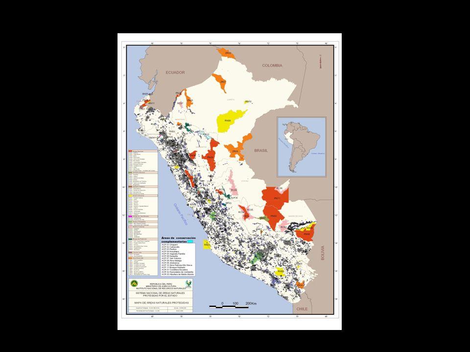Zonas Prioritarias para la Conservación En el proceso de formulación del Documento de Planificación de más alto nivel: el Plan Director, se efectuó un