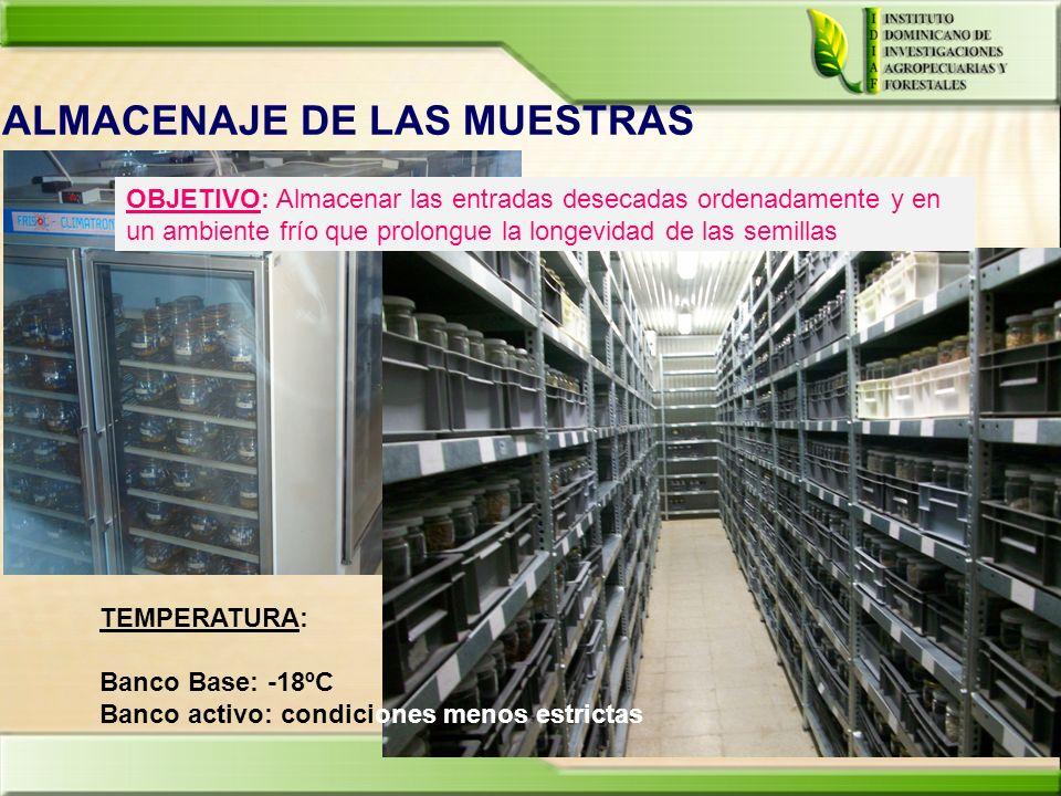 ALMACENAJE DE LAS MUESTRAS OBJETIVO: Almacenar las entradas desecadas ordenadamente y en un ambiente frío que prolongue la longevidad de las semillas